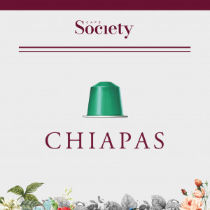 Chiapas - Capsules